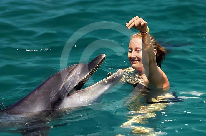 Wycieczka pływanie z delfinami w Bodrum Turcja